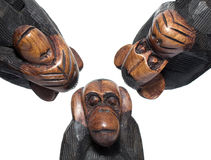Deaf, blind and dumb monkeys on white background Royalty Free Stock Photo