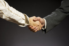 Deal, business  handshake. Woman and man hand on a gray background Stock Image