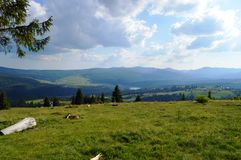 Dealu Botii. Near Cluj, is a village named Dealu Botii. It has a awsome view over the Belis lake Royalty Free Stock Photo