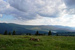 Dealu Botii. Near Cluj, is a village named Dealu Botii. It has a awsome view over the Belis lake Stock Photography