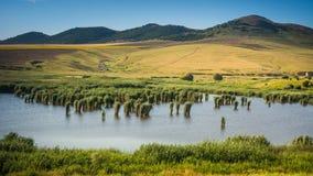 Dealurile Bestepe - Donaudelta - Rumänien royaltyfria foton