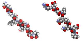 deamidated glutenpeptide för allergen vektor illustrationer