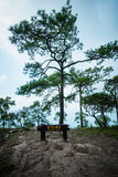 Deang Cliff at PhuKradueng national park Stock Photography