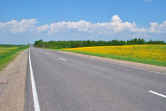 Dear. Straight and empty road running through fields Stock Photos