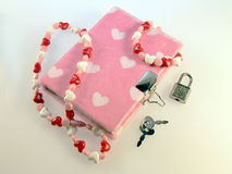 Dear Diary. Young girls diary.  Pink faux fur with hearts Stock Images