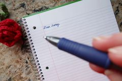 Dear Diary Pen Closeup royalty free stock photo