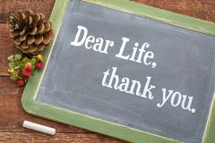 Dear life, thank you on blackboard Royalty Free Stock Images
