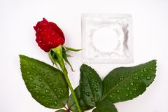 Dear love, roses, special occasions, along with condoms, background. Dear love roses special occasions along with condoms background stock photo