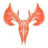 Dear skull. Dear head skull skeleton line art Royalty Free Stock Image