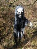 Death bone man Stock Image