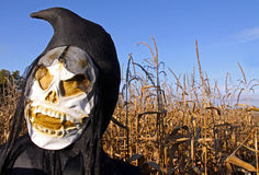 Death in a corn field. Grim Reaper Death inflatable in a corn field at a Halloween festival Stock Images