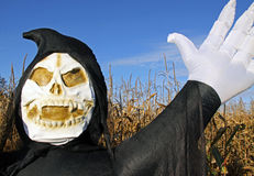 Death in a corn field. Grim Reaper Death inflatable in a corn field at a Halloween festival Royalty Free Stock Photography