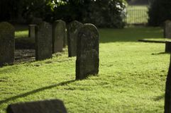 Death and decay Stock Photos