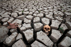 Death on drought with human part Stock Images
