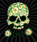 Death in flowers. Daisy emo skull Royalty Free Stock Photos