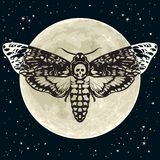 Death Head Hawkmoth On The Full Moon And Night Sky Background. Skull Moth Butterfly. Vector Royalty Free Stock Photo