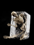 Death in ice concept, Skull in ice isolated Royalty Free Stock Image