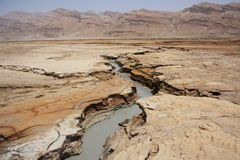 Dead Sea in Jordan, Israel. Dry part of death sea Royalty Free Stock Photography