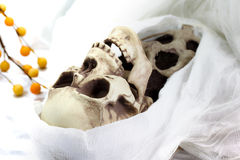 Death skeleton (grim reaper) Royalty Free Stock Photo