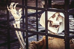 Death. Skeleton prisoner dead. A prisoner is behind bars, his remains only a skeleton with a hood and habit Stock Images