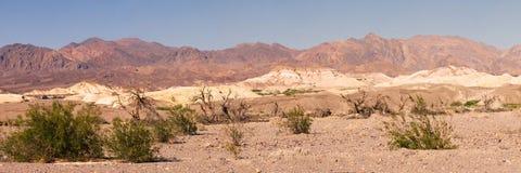 Death Valley 库存照片