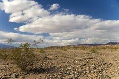 Death Valley Arkivfoto
