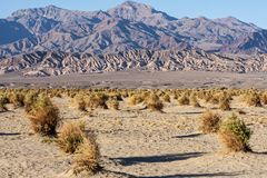 Death Valley Lizenzfreies Stockbild