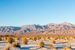 Death Valley fotografia de stock royalty free