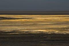 Death Valley 5 Fotografering för Bildbyråer