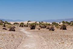 Death Valley Royaltyfri Foto