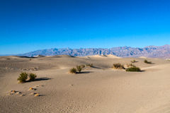 Death Valley Arkivfoto