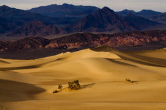 Death valley at dawn Stock Photos