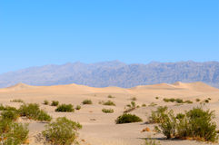 Death Valley Desert 2. Hot Death Valley Desert with Mountains in background, US Stock Photography