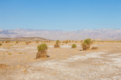 Death Valley Desert Royalty Free Stock Photos