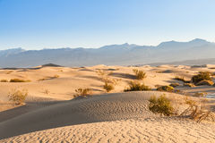 Death Valley Desert Stock Image