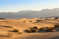 Death Valley Desert Royalty Free Stock Images