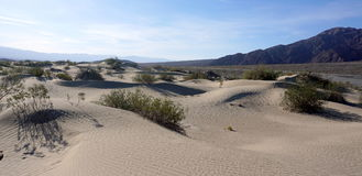 Death Valley desert Royalty Free Stock Image