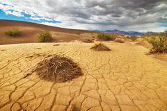 Death Valley. Dry ground in Death Valley Royalty Free Stock Photo