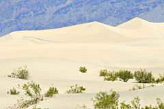 Death Valley Dunes Stock Photo