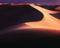 Death Valley Dunes, Morning. Royalty Free Stock Photography