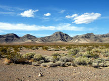 Death Valley Landscape. Desert flora are scattered across this dry Death Valley Plain Stock Photos