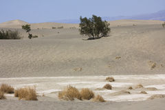 Death Valley landskap Royaltyfri Fotografi