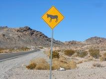 Death Valley, los E.E.U.U. Foto de archivo libre de regalías
