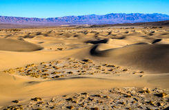 Free Death Valley National Park Stock Photography - 65040502