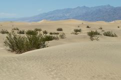 Death Valley National Park. View at the Death Valley National Park Royalty Free Stock Photo