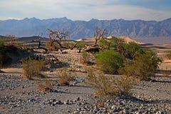 Death Valley nationalpark Fotografering för Bildbyråer