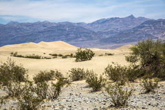 Death Valley, Nevada , USA Royalty Free Stock Images