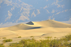 Death Valley Sand Dunes. Sand Dunes Landscape in Death Valley Desert, California Royalty Free Stock Image
