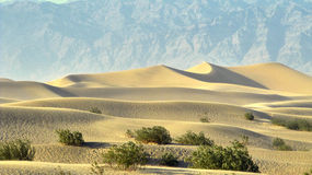 Death Valley sand dunes Royalty Free Stock Images