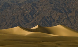 Death valley - sand dunes Royalty Free Stock Photo